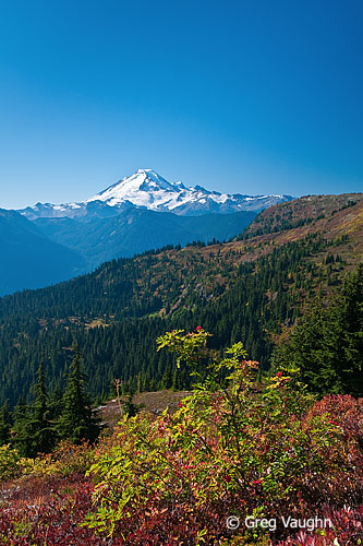 Mount Baker from Yellow Aster Butte Trail.
