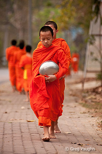 young Buddhist monks on their morning procession