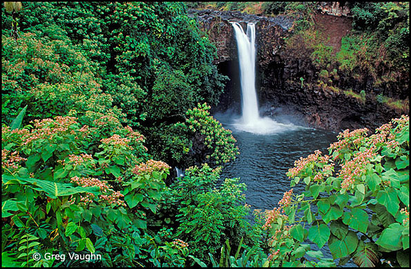 Rainbow Falls Hilo Hawaii