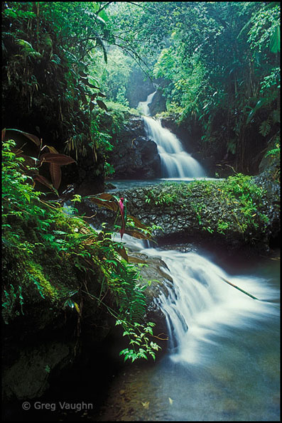 Onomea Falls Hawaii