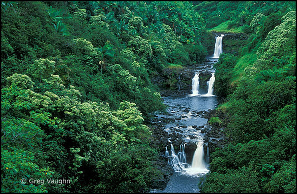 waterfalls on Umauma Stream Hawaii