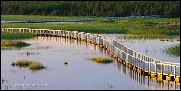 Wetlands boardwalk trail in Prince Edward Island National Park
