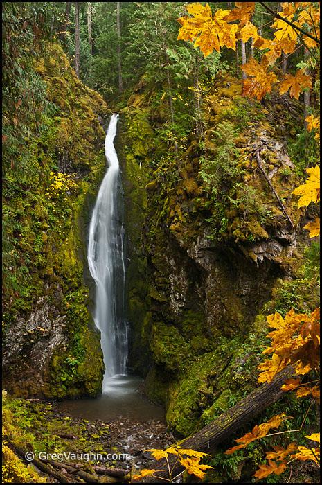Pinard Falls Umpqua National Forest Cascade Mountains Oregon