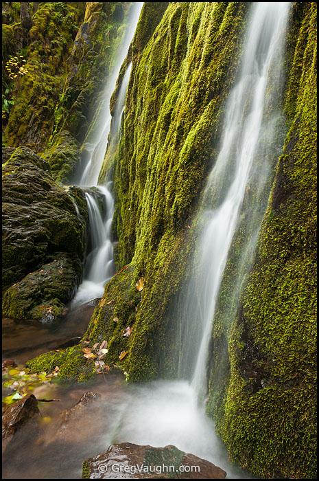 Moon Falls Umpqua National Forest Cascade Mountains, Oregon.